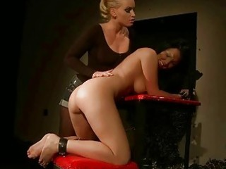 dominatrix-bitch kathia nobili punishing sex