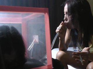 smoke box heaven