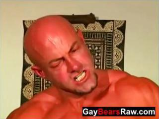 older raw bears gazoo fucking