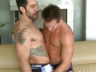 muscled tattoed hunks give every other a oral sex