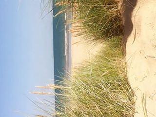 studland exposed beach august 3931