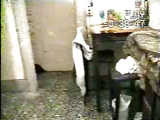 onion head vhs trashmanvideo 6225